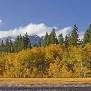 Mt-Tallac-Fall-Photo